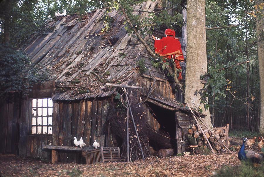 La fameuse cabane de Peau d'âne. Intrigué par cette dernière, le prince (Jacques Perrin), grimpe jusqu'à une fenêtre et y découvre la jeune femme (image tirée du film de Jacques Demy). 2003 Succession Demy