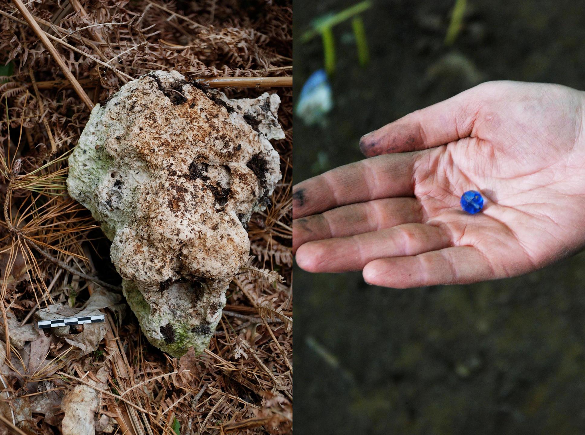 Découverts dans la zone de fouille : à gauche, les restes de la tête de lion en plâtre sculptée, élément du décor du film, et, à droite, une perle bleue tombée de l'un des magnifiques costumes de Peau d'âne. Olivier Weller / LookatSciences